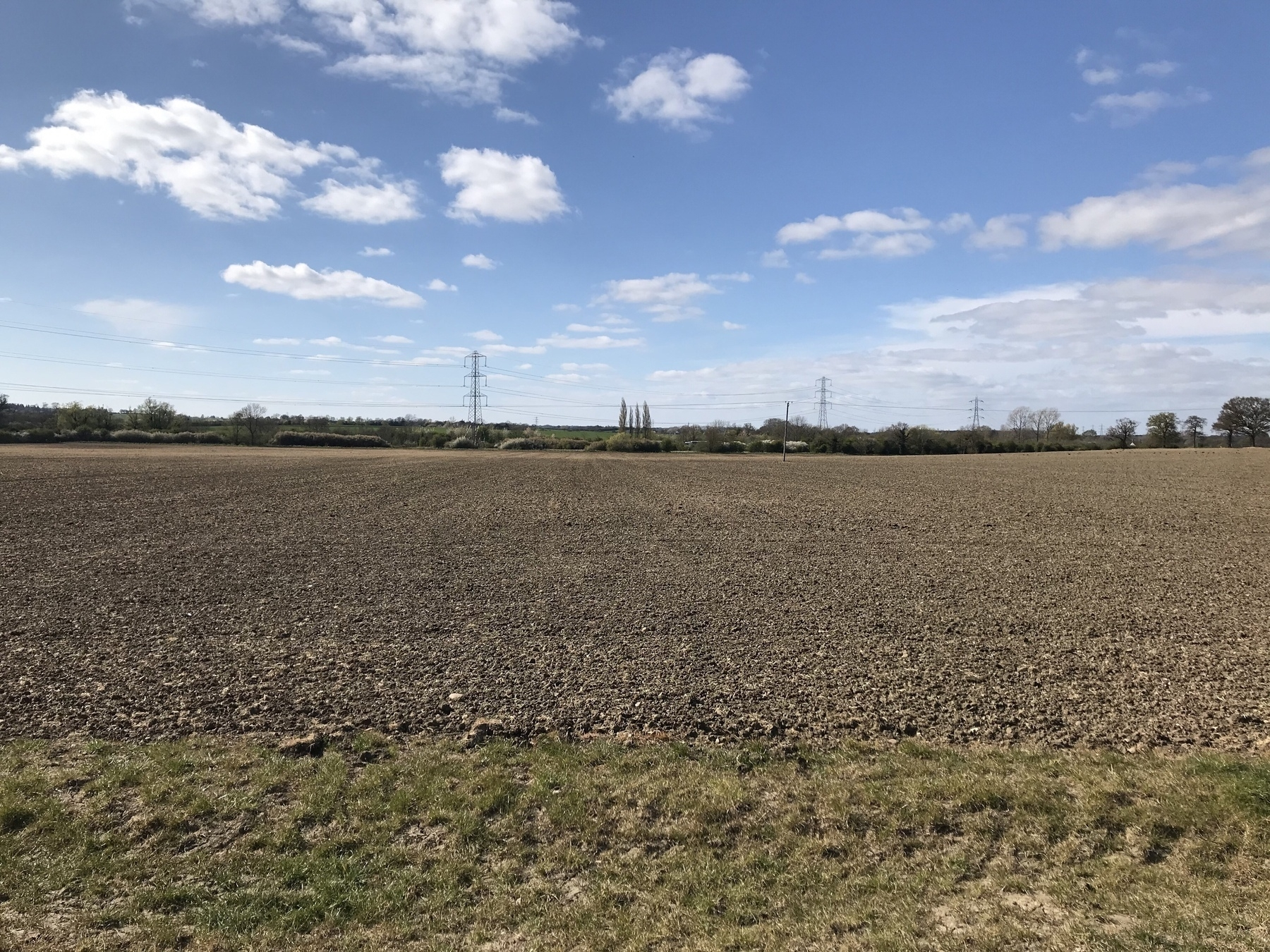 A field, with no path